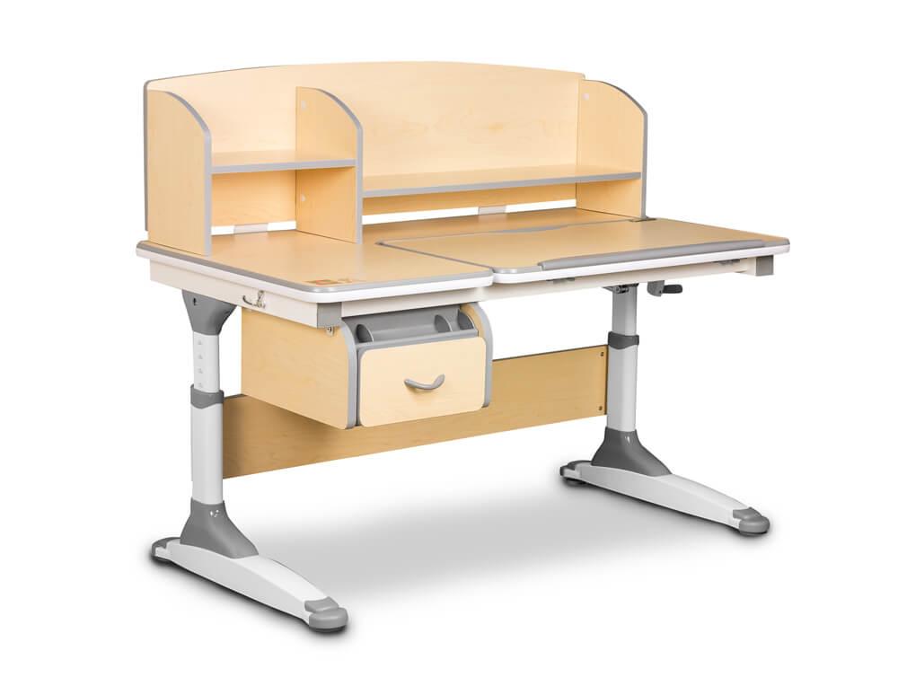2-nożna podstawa biurka dla dzieci Torino Ergodesk